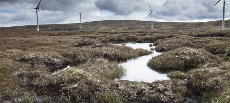 Tailored project planning and delivery solutions for Peatland Restoration